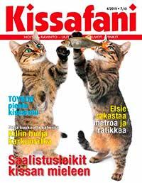 Kissafani tarjous