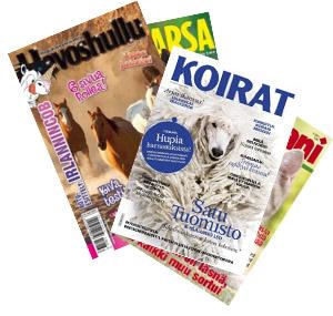 lemmikki lehti